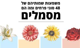 משמעות שמותיהם של 48 פרחים ומה הם מסמלים