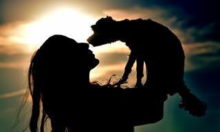 14 ציטוטים על הקשר בין האדם לחיות מחמד