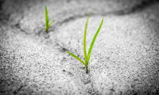9 עצות חכמות שיעזרו לכם להפוך מחסומים להזדמנויות