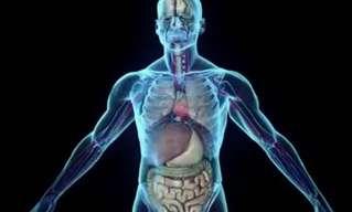 סם מזיק או תרופת פלא טבעית? צפו בסרטון הבא והכריעו בעצמכם