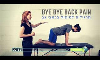 אימון אינטרנטי מקיף עבור טיפול בכאבי גב ומניעת גב תפוס בליווי פיזיותרפיסטית מוסמכת