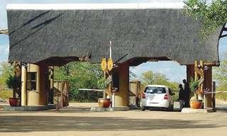 הפארק הלאומי קרוגר בדרום אפריקה
