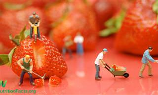 """ד""""ר מייקל גרגר מוכיח מדעית כיצד תזונה לקויה פוגעת באיכות חיינו, וכיצד אפשר לטפל בבעיה"""