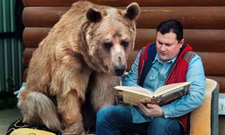 הכירו את סטפן, דוב המחמד