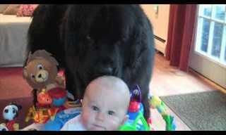 פספוסי תינוקות חמודים!