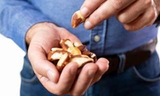 יתרונותיהם הבריאותיים של אגוזי ברזיל