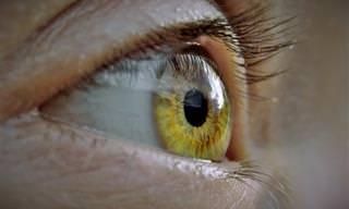 כל מה שרציתם לדעת על על ניוון רשתית העין