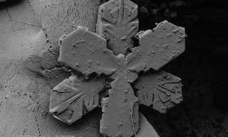 פתיתי שלג תחת מיקרוסקופ אלקטרוני