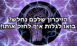 3 גורמים נפוצים לבעיות זיכרון והפיתוח הישראלי שעוזר להימנע מהן