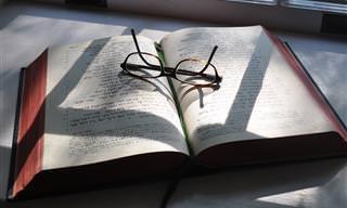 מבחן עברית: מה השם התקין של הביטויים והמילים האלו?