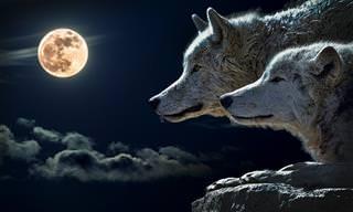 מעשה בשני זאבים: משל על נפש האדם