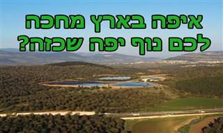 נפלאות הטבע הישראלי: בוא לגלות מה מחכה לך בנחל ויער ציפורי