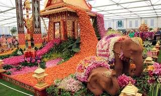 תמונות מתערוכת הפרחים הגדולה של צ'לסי