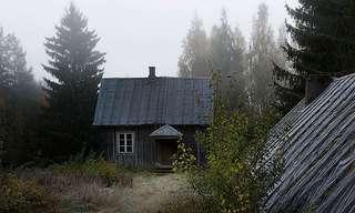 בית מיוחד בלב היער
