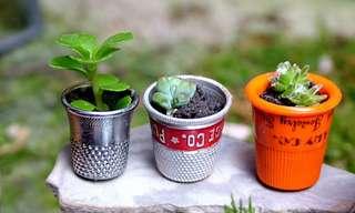 16 שיפורים ירוקים לבית ולגינה