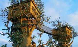 בתים שנוצרו באגדות - מדהים!