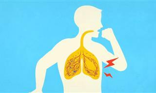 דברים שצריך לדעת על שפחת - אחת מהמחלות המסוכנות בעולם