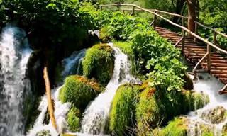 צפו בצילומי הטבע הקסום בגן העדן של קרואטיה