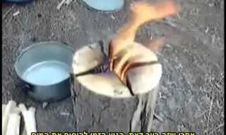 בישול בשטח על גזע עץ