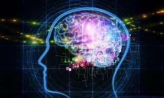 9 דרכים יעילות לשיפור הזיכרון