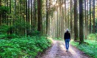 10 לקחים חשובים לחיים שכולנו חייבים לזכור