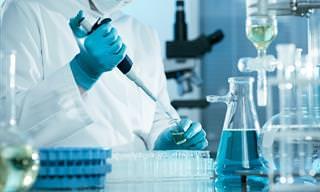 5 פיתוחים וחידושים בחקר וריפוי גידולים סרטניים