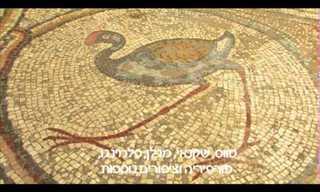 פסיפס 120 הציפורים בקיסריה