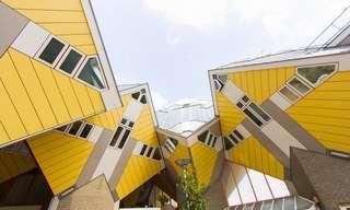 17 בתי מגורים בעיצובים מיוחדים מרחבי העולם