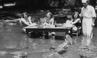 תמונות שמתעדות רגעים מרתקים ואפלים בהיסטוריה