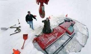 דברים מצחיקים שרואים רק באלסקה!