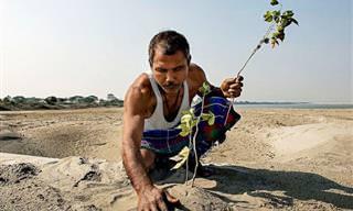 סיפורו של היערן ההודי שמציל את האי מג'ולי