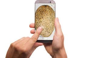 6 אפליקציות מומלצות לקראת פסח
