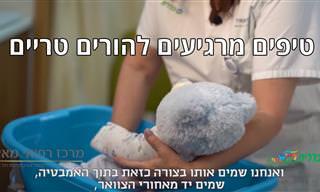 מומחית מסבירה: כל מה שצריך לדעת על טיפול נכון בתינוקות