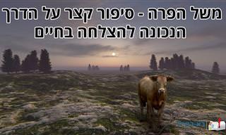 """""""משל הפרה"""" - סיפור קצר שילמד אתכם על הדרך להצלחה"""
