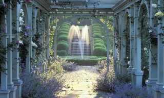 התמונות המנצחות בתחרות צילומי גן וטבע!