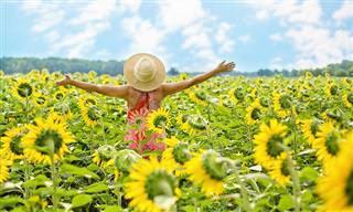 17 עצות מעצימות לחיים מאושרים ומלאי סיפוק