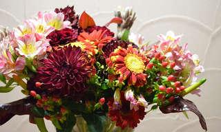 כך תשמרו על חיי זר הפרחים לאורך זמן - אפילו עד 3 שבועות!