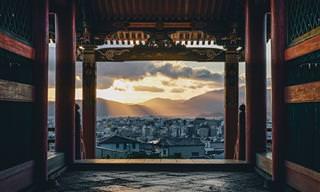 20 רגעים של יופי ושלווה מחיי היומיום ביפן
