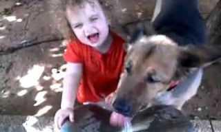 תינוק נגד כלב - מי ישתה ראשון?
