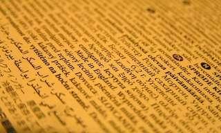 20 מילים לועזיות שחדרו לשפה העברית