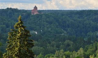 14 יעדים מומלצים בלטביה הירוקה והפורחת