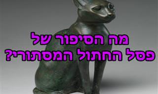פסל החתול המסתורי - בדיחה על גבר שרק דבר אחד חשוב לו