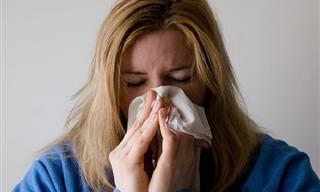 2 שיטות יעילות לטיפול באף סתום בתוך שניות ספורות