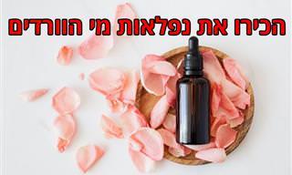 9 יתרונות בריאותיים ושימושים נהדרים למי ורדים שכדאי להכיר