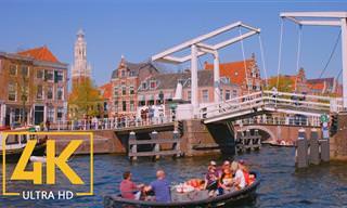 הכירו את הארלם ודלפט, שתי ערים הולנדיות מקסימות