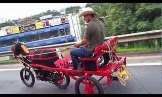 האופנוע שהפך לסוס - מדהים!