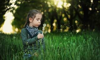 15 ציטוטים חכמים על חינוך ילדים ולמידה בגיל צעיר