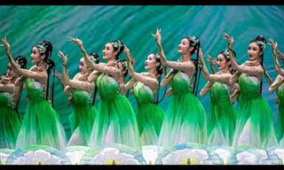 ריקוד הפרחים: מופע מרהיב שממלא את הלב בשמחה לרגל בוא האביב