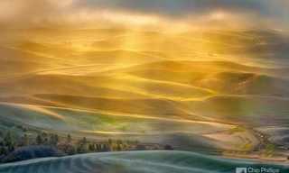 צילומי נוף מרהיבים של צ'יפ פיליפס