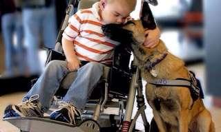 הצד היפה של החיים - תמונות מרגשות!
